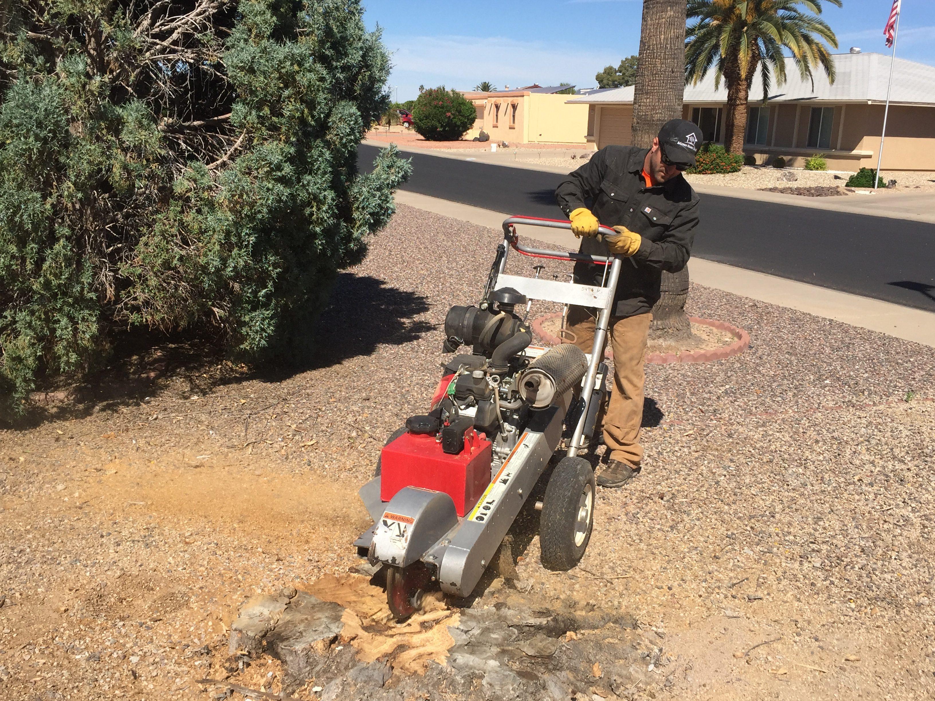 Arizona Stump Grinding