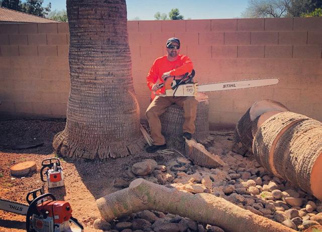 Jesse Csincsak - Arizona Tree Trimming and Removal