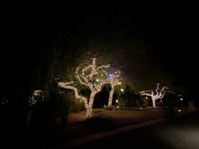 AZ Home Check Holiday Tree Lighting